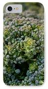 Fresh Broccoli IPhone Case by Susan Herber