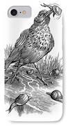 Garden Bird Catching Snails, Artwork IPhone Case by Bill Sanderson