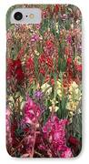 Gladioli Garden In Early Fall IPhone Case by Yva Momatiuk and John Eastcott and Photo Researchers