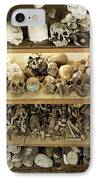 Hominid Skull Casts IPhone Case by Volker Steger