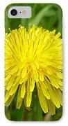Honey Bee Full Of Pollen IPhone Case by Renee Trenholm
