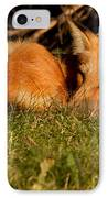 I Can See You IPhone Case by Mircea Costina Photography