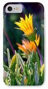 Ice Plant IPhone Case by Henrik Lehnerer