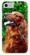 Irish Setter IPhone Case