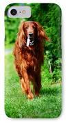 Irish Setter V IPhone Case by Jenny Rainbow