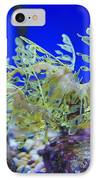Leafy Seadragon Phycodurus Eques At The IPhone Case by Stuart Westmorland