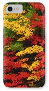 Leaves On Trees Changing Colour IPhone Case by Mike Grandmailson