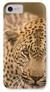 Leopard Panthera Pardus, Arathusa IPhone Case
