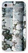 Lichen On Cinnamon Trees IPhone Case by Georgette Douwma