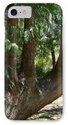 Limbs To Trees IPhone Case