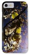 Looking Straight Up And Out Our Window IPhone Case by Katie Cupcakes