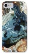 Nudibranch IPhone Case by Georgette Douwma