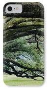 Old Growth Trees IPhone Case by Jeremy Woodhouse