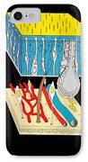 Olfactory Epithelium, Artwork IPhone Case