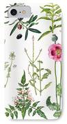 Opium Poppy And Other Plants  IPhone Case by  Elizabeth Rice