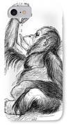 Orangutan, 19th Century IPhone Case by