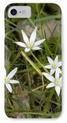 Ornithogalum Umbellatum IPhone Case by Bob Gibbons