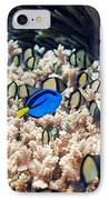 Palette Surgeonfish Over Coral IPhone Case by Georgette Douwma