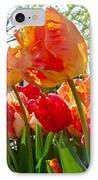 Parrot Tulips In Philadelphia IPhone Case
