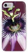 Passion Flower (passiflora Amethystina) IPhone Case by Lawrence Lawry
