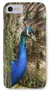 Peacock Display IPhone Case by Richard Garvey-Williams