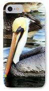 Pelican Pete IPhone Case by Karen Wiles
