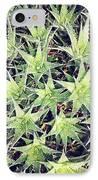 Philadelphia Flower Show IPhone Case by Katie Cupcakes