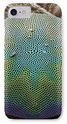 Planktonic Diatom Alga, Sem IPhone Case by Steve Gschmeissner