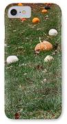 Pumpkins IPhone Case by Susan Herber