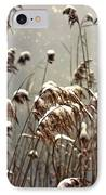 Reed In Snow IPhone Case by Joana Kruse