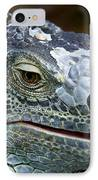 Rhinoceros Iguana IPhone Case by Fabrizio Troiani