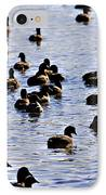 Safety In Numbers IPhone Case by Douglas Barnard