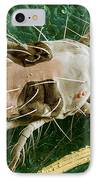 Sem Of Two-spotted Spider Mite IPhone Case