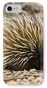 Short-beaked Echidna IPhone Case by Matthew Oldfield