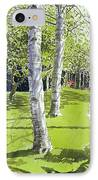 Silver Birches IPhone Case by Lucy Willis