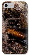 Spider Eats Termite IPhone Case by Dant� Fenolio