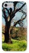 Spring Oak IPhone Case by Kathy Yates