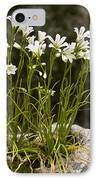 Star-of-bethlehem (gagea Graeca) IPhone Case by Bob Gibbons