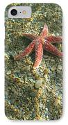 Starfish In Shallow Water IPhone Case by Ted Kinsman