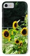 Sunflower Patch IPhone Case by Debra     Vatalaro
