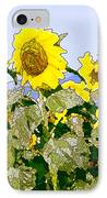 Sunflowers Sunbathing IPhone Case by Artist and Photographer Laura Wrede