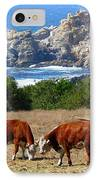 Surf And Turf Two IPhone Case by Jeff Lowe