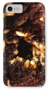 Termite Nest IPhone Case by Science Source