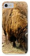 The American Buffalo IPhone Case