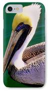 The Happy Pelican IPhone Case by Karen Wiles