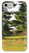 The Sunny Stroll IPhone Case by Sonali Gangane