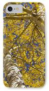Towering Autumn Aspens With Deep Blue Sky IPhone Case by James BO  Insogna