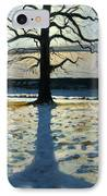 Tree And Shadow Calke Abbey Derbyshire IPhone Case by Andrew Macara