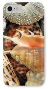 Tropical Shells IPhone Case by Kaye Menner