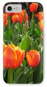 Tulip Time IPhone Case by Margaret Hodgson